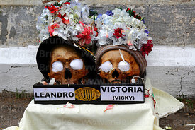Decorated skulls wearing crown of flower petals in a box with their names on it, Ñatitas festival, La Paz, Bolivia