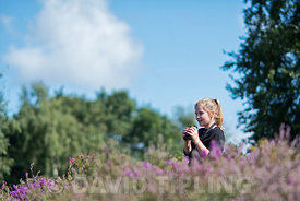 Young girl birdwatching on lowland heath North Norfolk in summer (model released - Charlotte Tipling)
