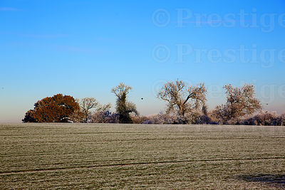 Oxfordshire fields on a  frosty winters morning