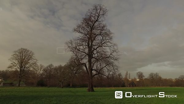 Drone Video Hyde Park in Winter London England