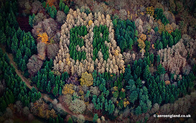 aerial photograph showing the letters ER spelt out in trees in Herefordshire England UK.