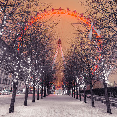 London Eye at night with trees in the foreground lit with lights and snow on the pathway, London, UK