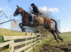 Martin Reason jumping a hunt jump - The Cottesmore at Furze Hill.