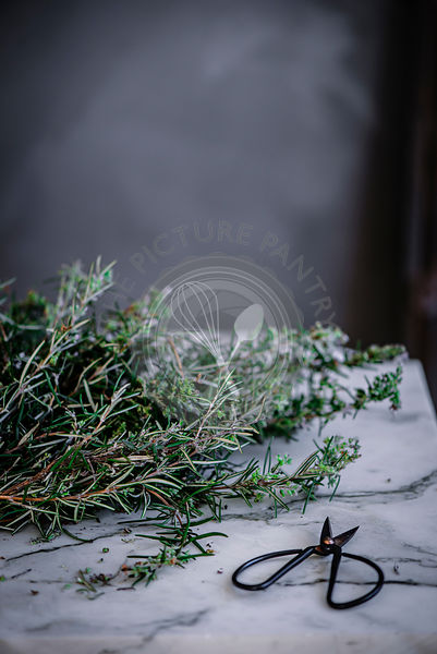 Rosemary and scissors on a marble surface