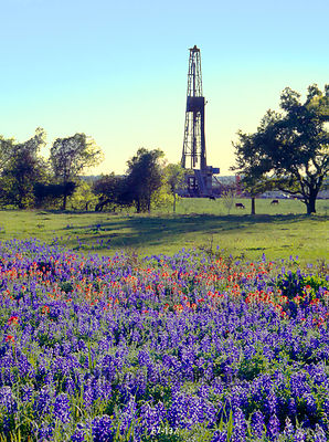 Oil derrick and Texas wildflowers