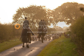 The Cottesmore hounds head into the rising sun - Sawgate Lane, Burton Lazars, Leicestershire, 24/9/11