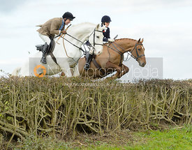 Rosie Grimston jumping a hedge near Gartree Covert
