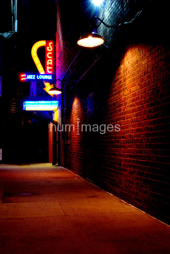 Scat Jazz Club colorful neon sign at night vertical