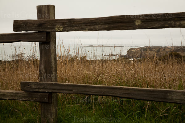 Old wooden fence in front of the sea at Ano Nuevo State Reserve, California