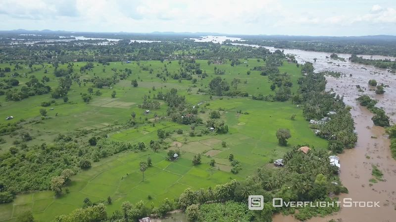 Rice paddies at Don Khone Island, one of the 4000 islands, filmed by drone, Laos