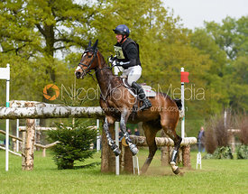 Oliver Townend, SAMUEL THOMAS II - Cross Country - Mitsubishi Motors Badminton Horse Trials 2017