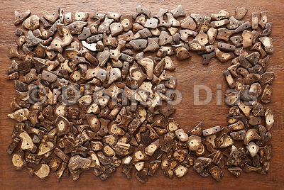 Background of Wood and Pieces of Coconut Husk