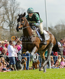 Nicky Roncoroni and TRIG POINT - Cross Country - Mitsubishi Motors Badminton Horse Trials 2013.