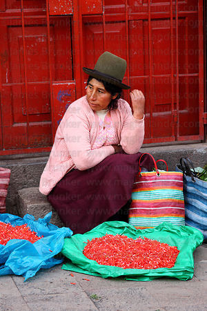 Lady selling ñucchu flowers for Easter in market , Cusco , Peru