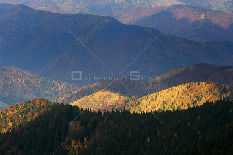 Forest covered hills, Piatra Craiului National Park, Transylvania, Southern Carpathian Mountains, Romania, October 2008