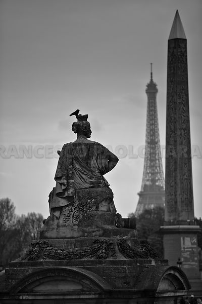 Paris photos, pictures