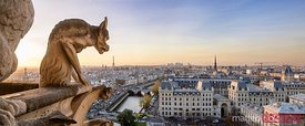 Panoramic of Notre Dame gargoyle and city of Paris at sunset