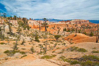 The High Desert- Bryce Canyon, Utah