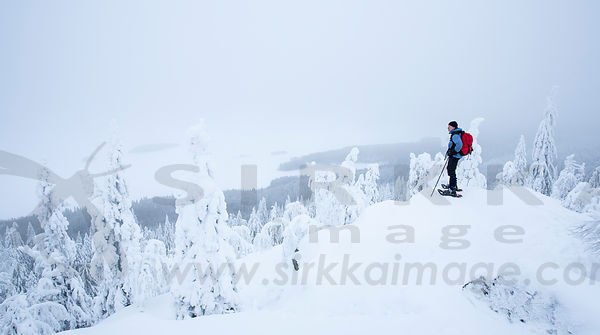 Cloudy winter day on Ukko-Koli