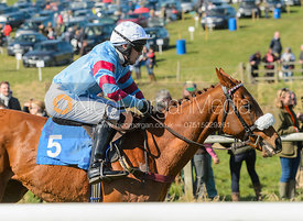 Race 1 Novice Riders - The Belvoir Point-to-point 2017
