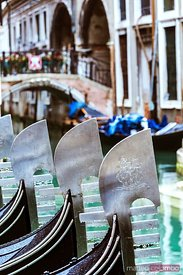 Italy, Veneto, Venice. Row of Gondolas moored