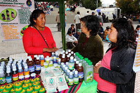 Pregnant girl and her mother shopping at stall selling alternative medicines at trade fair promoting products made from coca leaves , La Paz , Bolivia