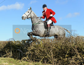 Andrew Osborne MFH jumping a hedge near Knossington Spinney - The Cottesmore at Furze Hill.