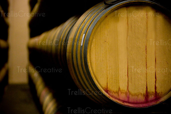 Oak wine barrels line the winery cellar