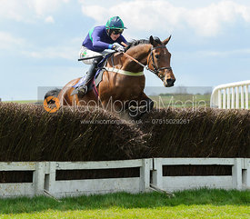 Jack Andrews (PROXIMO) - The Quorn at Garthorpe