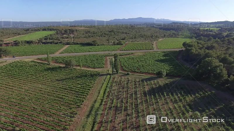 Aerial view of vineyards at Sainte-Victoire Mountain, filmed by drone, Puyloubier, France