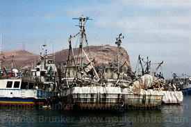 Disused fishing boats covered in guano in fishing port, El Morro headland in background, Arica, Region XV, Chile