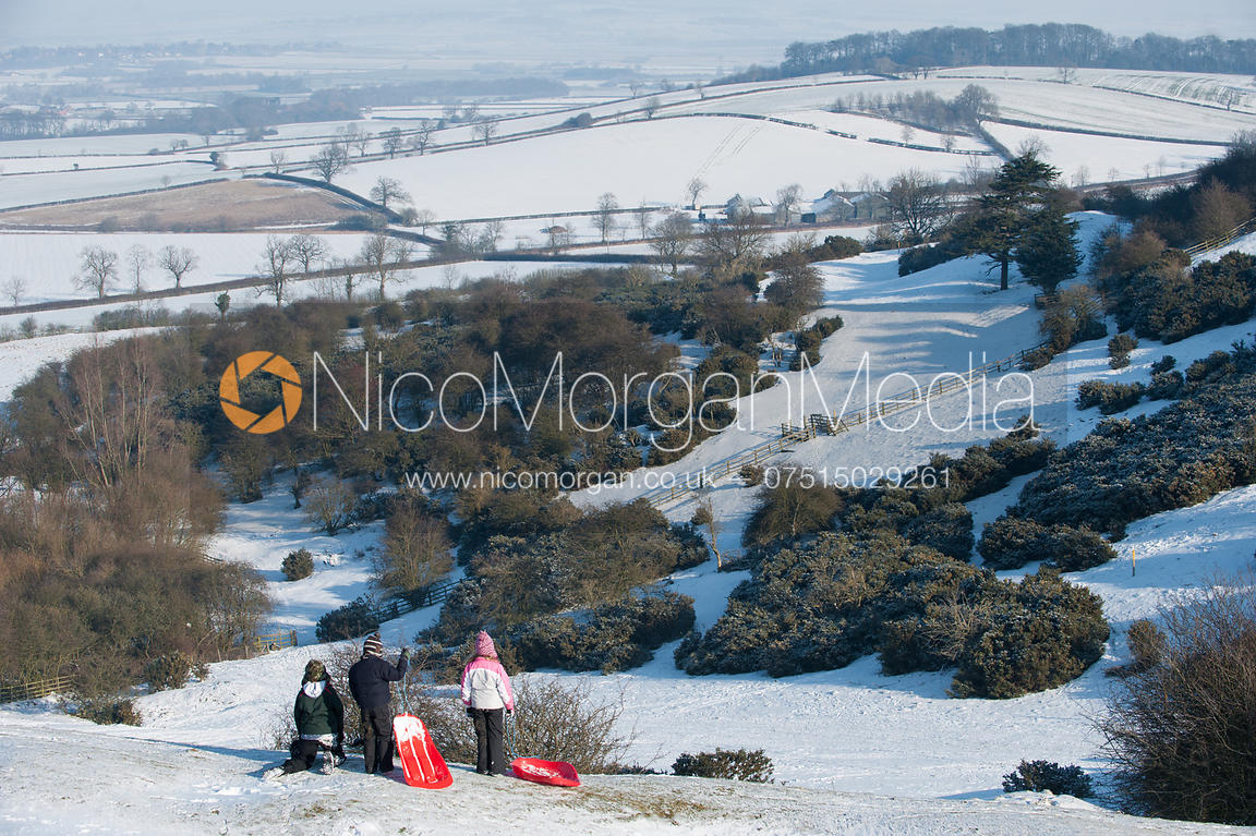 Children with sledges looking out over snowy valley