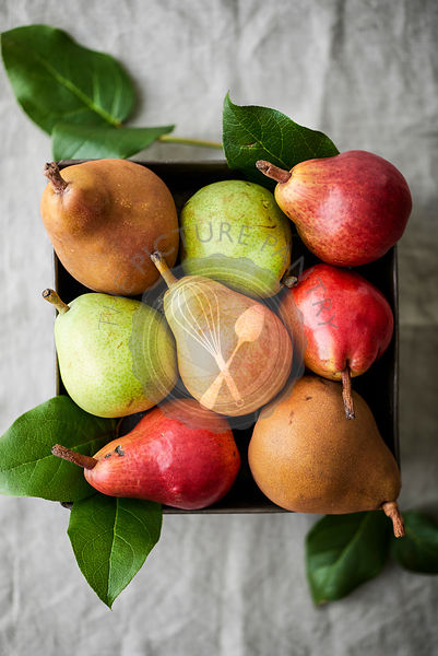 Fresh, ripe pears in a metal tin on a natural linen.