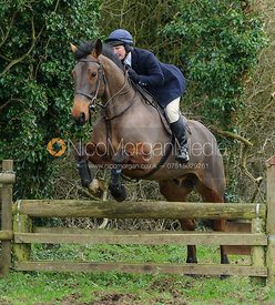 Holly Campbell jumping a hunt jump near Knossington Spinney