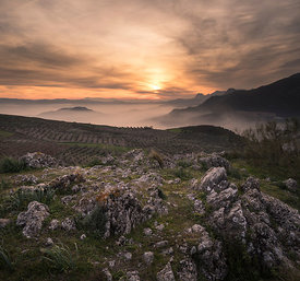 Mist in the Axarquia mountains