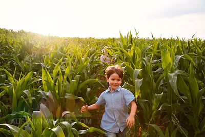 Two children playing in a maize field