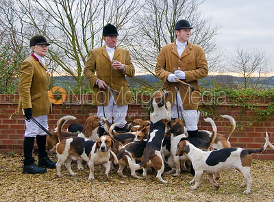 Westerby Bassets at Hill Top Farm 3/1 photos
