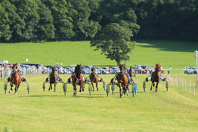 HARNESS RACING/TROTTING, ABERYSTWYTH photos