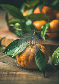 Fresh ripe tangerine with leaves over rustic wooden table background