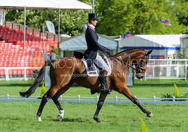 William Fox-Pitt and PARKLANE HAWK - Dressage phase, Mitsubishi Motors Badminton Horse Trials 2014