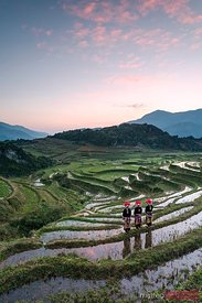 Three red dao women on rice paddies, Sa pa, Vietnam