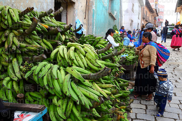 Green plantains for sale in street market , Coroico, North Yungas province, Bolivia