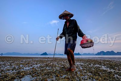 BAIE DE HA LONG, PECHE//HA LONG BAY, FISHING
