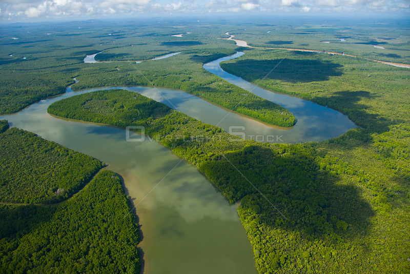 Aerial view of lowland rainforest and Kinabatangan River and tributaries, Sabah, Malaysia . 2007