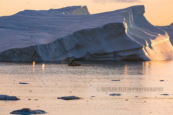 2 whales breathing near a tourists boat in front of a massive iceberg in the Unesco Ilulissat Icefjord in Greenland