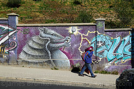 Woman walking past Andean hairy armadillo mural, La Paz, Bolivia
