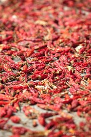 Red chili peppers drying in open air, Longsheng, China