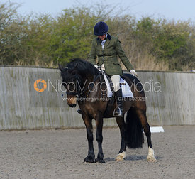 Rutland Riding Club Dressage, Ranksborough Polo Club, Saturday 29th March 2014.