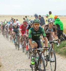 The Peloton on a Cobblestone Road - Tour de France 2015