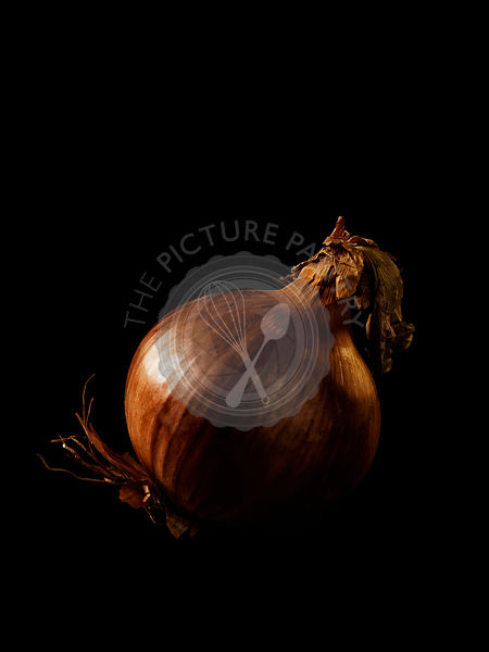 Onion on black background